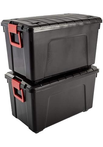 IRIS OHYAMA Aufbewahrungsbox »SIA110« (Set, 2 Stück) kaufen