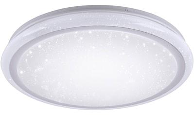 Leuchten Direkt LED Deckenleuchte »LUISA«, LED-Board-LED-Board, 1 St., Warmweiß-Neutralweiß-Kaltweiß-Farbwechsler, LED Deckenlampe kaufen