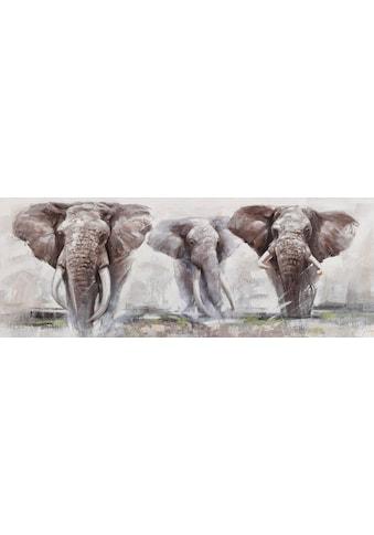 Home affaire Ölbild »Elephant«, Elefanten kaufen