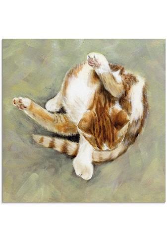 Artland Glasbild »Katzenwäsche«, Haustiere, (1 St.) kaufen