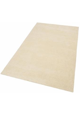 Orientteppich, »Agadir 1«, Theko Exklusiv, rechteckig, Höhe 25 mm, manuell geknüpft kaufen