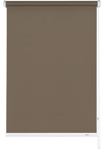 GARDINIA Seitenzugrollo »Uni-Rollo Abdunklung«, verdunkelnd, 1 Stück, im Fixmaß kaufen