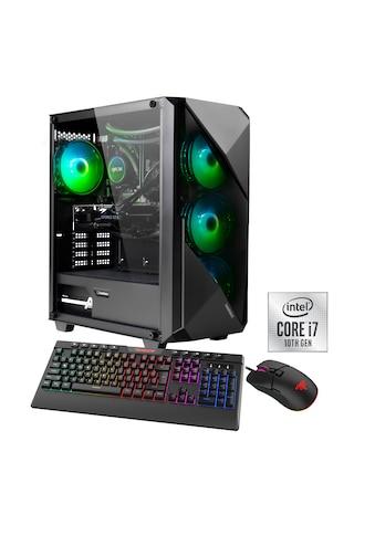Hyrican Gaming-PC »Striker 6718« kaufen