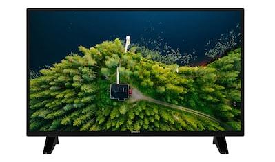 Hitachi H32E1001 LED - Fernseher (80 cm / (32 Zoll), HD ready kaufen