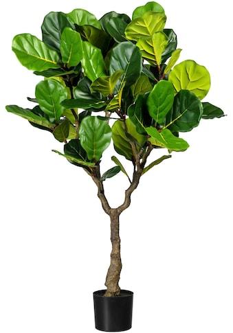 Creativ green Kunstbaum »Ficus lyrata« (1 Stück) kaufen