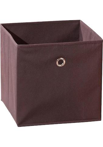 INOSIGN Faltbox »Winny Braun« kaufen