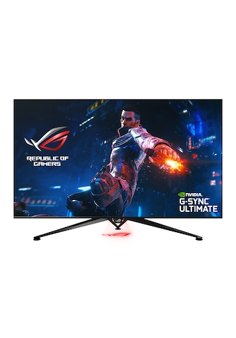"Asus PG65UQ Gaming Monitor »163,9 cm (64,5"") 4K 3840 x 2160, 4 ms« kaufen"