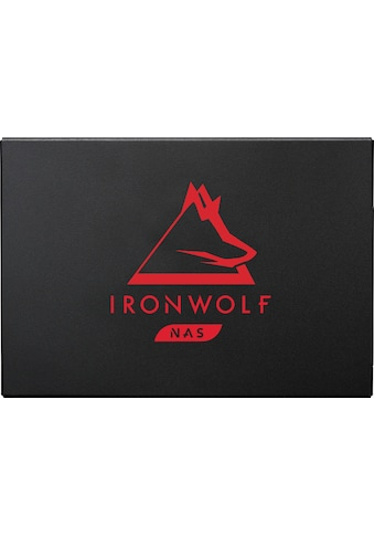 Seagate interne SSD »IronWolf 125«, Inklusive 3 Jahre Rescue Data Recovery Services kaufen