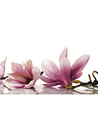 my home Kunstdruck »CYNTHIA ANN / Magnolia«, (1 St.) kaufen