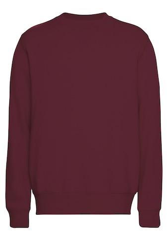 OTTO products Sweatshirt »aus nachhaltiger Bio-Baumwolle« kaufen