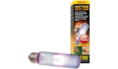 EXO TERRA Terrarienbeleuchtung »Daytime Heat Lamp«, 25 W, T10 kaufen