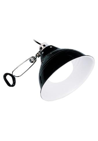 EXO TERRA Klemmleuchte »Glow Light«, mit fluoreszierendem Reflektor, Ø: 14 cm kaufen