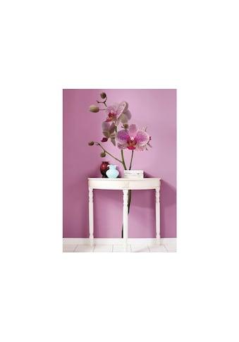 KOMAR Wandtattoo »Orchidee« kaufen