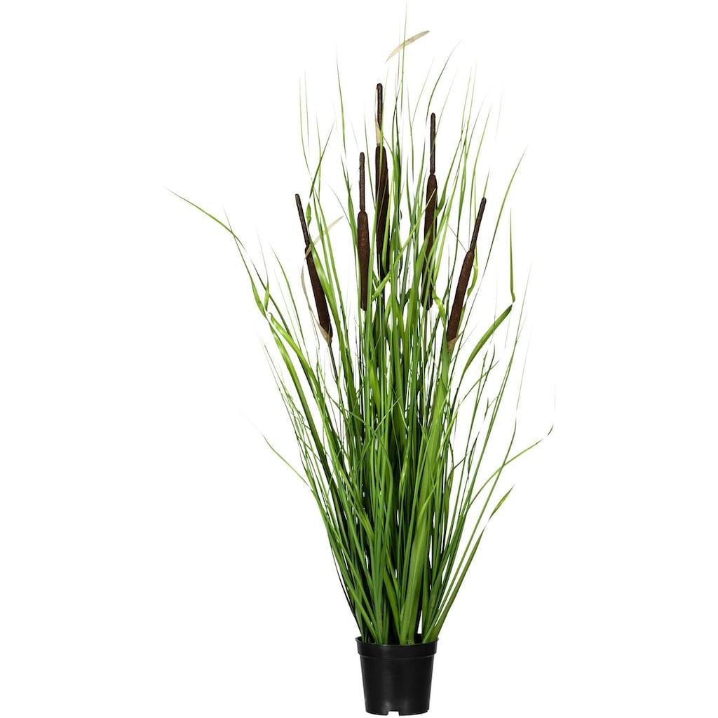Creativ green Kunstgras »Grasbusch mit Schilfkolben«