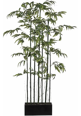 Creativ green Kunstbambus »Bambus Raumteiler« (1 Stück) kaufen