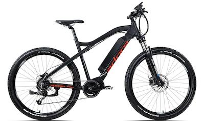 Adore E - Bike »Xpose«, 9 Gang Shimano Altus Schaltwerk, Kettenschaltung, Mittelmotor 250 W kaufen
