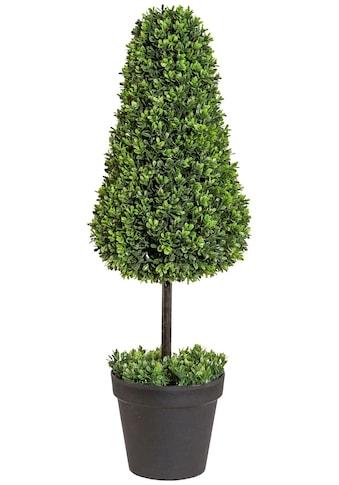 Creativ green Kunstpflanze »Buchsbaumkegel auf Stamm« (1 Stück) kaufen