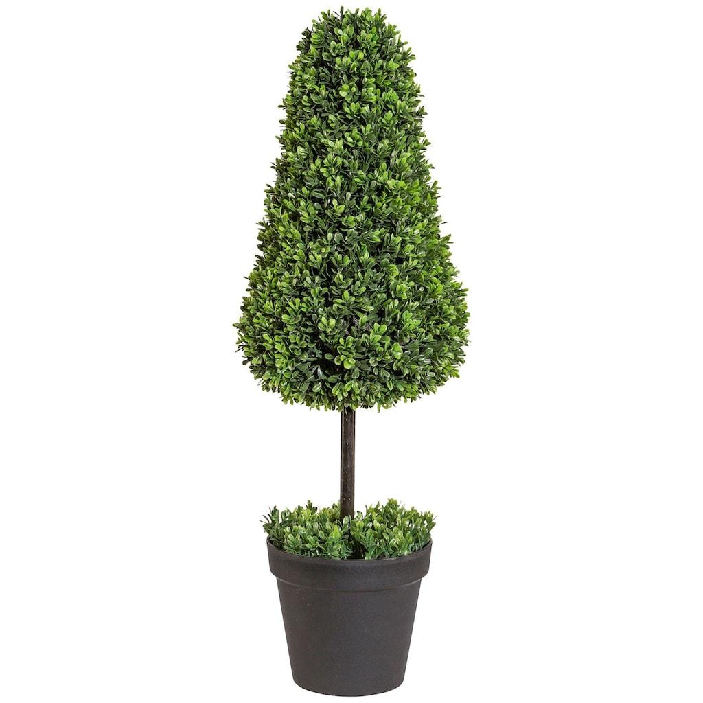 Creativ green Kunstpflanze »Buchsbaumkegel auf Stamm« (1 Stück)
