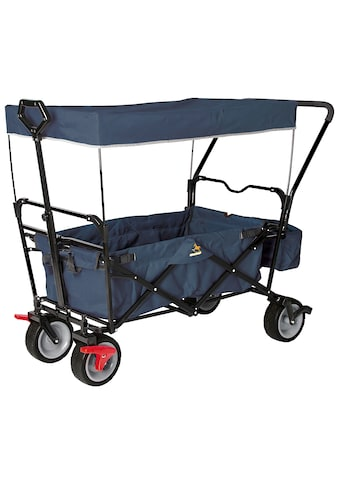 PINOLINO Bollerwagen »Paxi dlx Comfort«, BxTxH: 134x59x102 cm kaufen