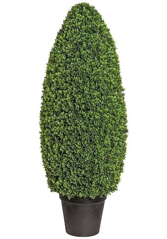 Creativ green Kunstpflanze »Buchsbaumsäule im Formschnitt« (1 Stück) kaufen