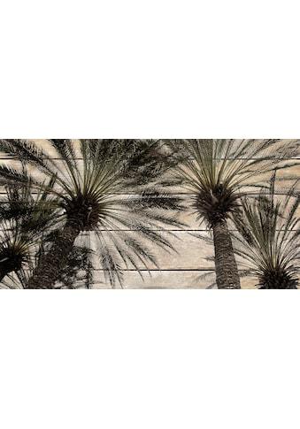 QUEENCE Holzbild »Vintage Palmen«, 40x80 cm Echtholz kaufen