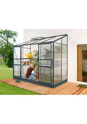 Vitavia Anlehngewächshaus »Styx 3300« kaufen