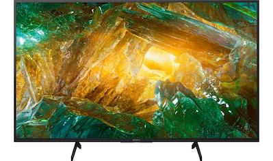 "Sony LED-Fernseher »KD49XH8096 Bravia«, 123 cm/49 "", 4K Ultra HD, Android TV kaufen"