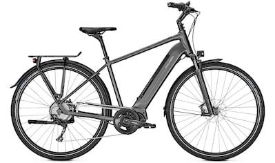 Raleigh E - Bike »Sheffield 9«, 9 Gang Shimano Alivio Schaltwerk, Kettenschaltung, Mittelmotor 250 W kaufen