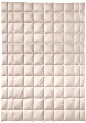 billerbeck Baumwollbettdecke »ZIRBERELLA® Cotton«, normal, Füllung 100% Baumwolle mit... kaufen