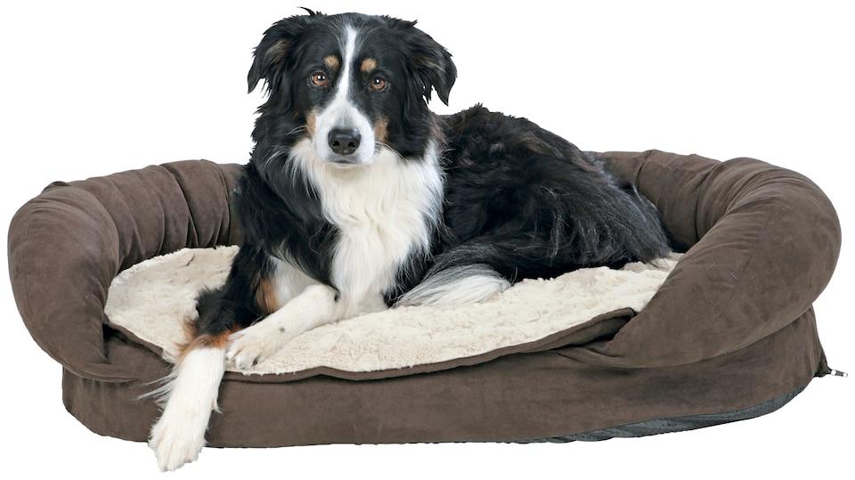 trixie hundebett vital bett fabiano bxl 120x75 cm. Black Bedroom Furniture Sets. Home Design Ideas