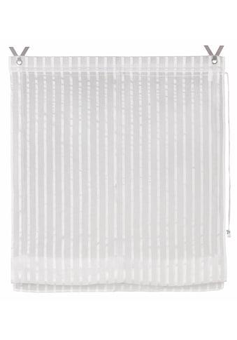 Good Life Raffrollo »Nia«, mit Hakenaufhängung, ohne Bohren, freihängend, zum Klemmen auf den Fensterrahmen - mit Metallhaltern kaufen