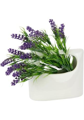 I.GE.A. Kunstpflanze »Lavendel« (1 Stück) kaufen
