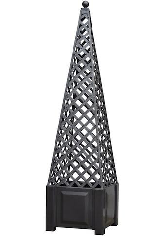 KHW Spalier »Obelisk«, mit Pflanzkasten, BxH: 43x172 cm, anthrazit kaufen