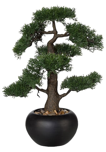 Creativ green Kunstpflanze »Bonsai« kaufen