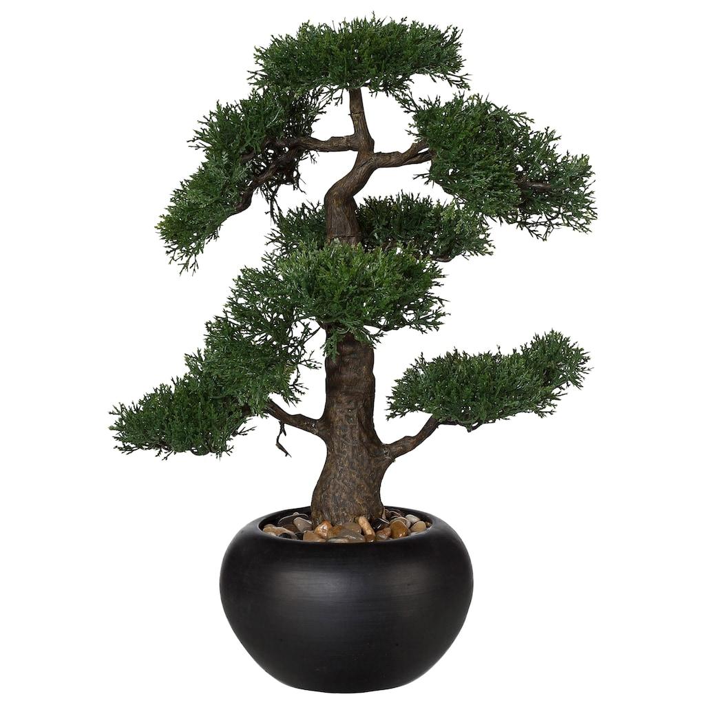 Creativ green Kunstpflanze »Bonsai«