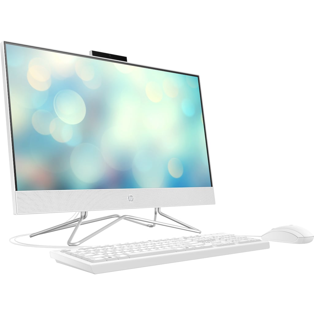HP All-in-One PC »Pavilion 24-df0200ng«