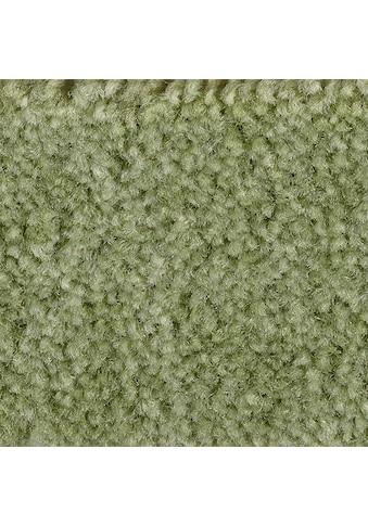 Bodenmeister Teppichboden »Dinora«, rechteckig, 8 mm Höhe, Meterware, Breite 400/500... kaufen