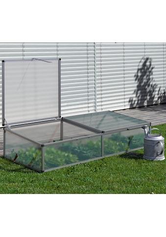 KGT Frühbeet, BxTxH: 205x91x46 cm kaufen