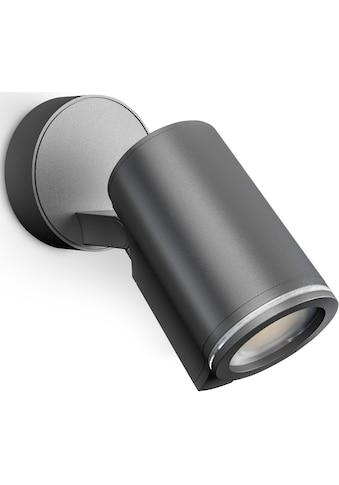 steinel LED Außen-Wandleuchte »Spot ONE«, LED-Board, Warmweiß, über Kabel vernetzbar kaufen