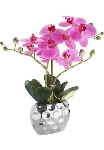 Leonique Kunstpflanze »Orchidee« (1 Stück) kaufen