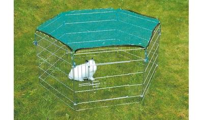 TRIXIE Freigehege, BxLxH: 126x126x60 cm, mit Schutznetz kaufen