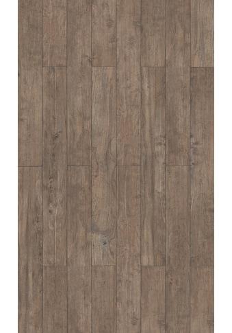 PARADOR Laminat »Trendtime 1  -  Esche gealtert«, 1285 x 158 mm, Stärke: 8 mm kaufen
