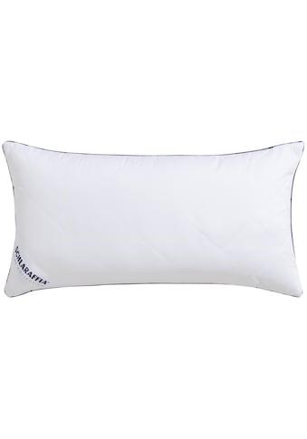 Microfaserkissen, »Relax«, Schlaraffia, Bezug: 100% Baumwolle kaufen