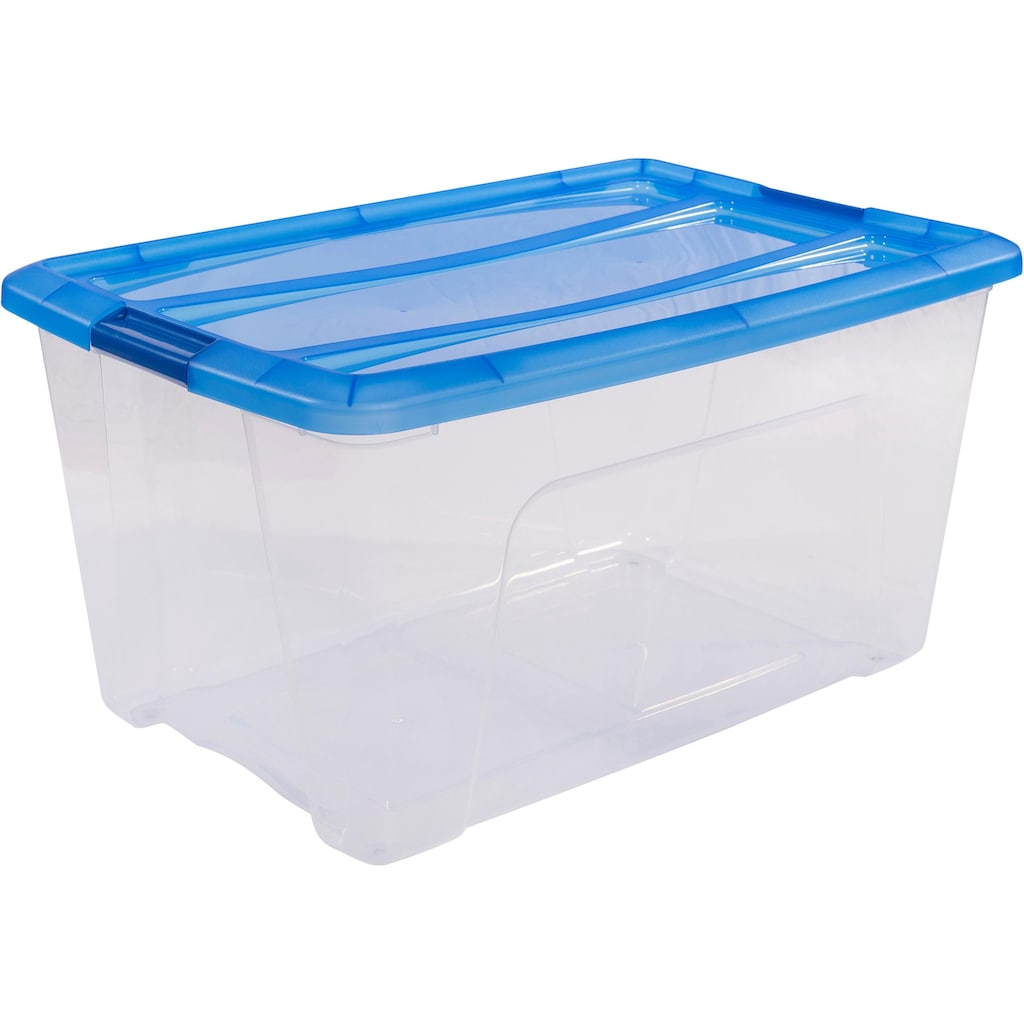 IRIS OHYAMA Aufbewahrungsbox »NTB45«