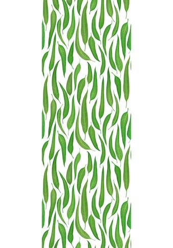 QUEENCE Vinyltapete »Weiden Blätter«, 90 x 250 cm, selbstklebend kaufen