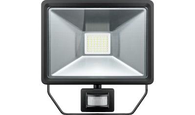 Goobay LED Außen - Flutlichtstrahler »mit Bewegungsmelder, 50 W« kaufen