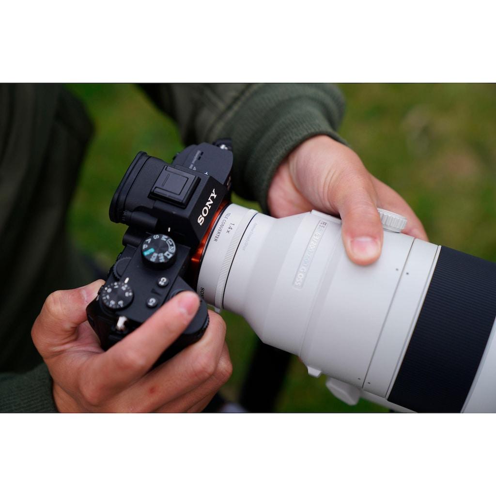 Sony Objektiv »SEL-200600G E-Mount Super-Telezoom«, E 200-600mm F5.6-6.3, APS-C