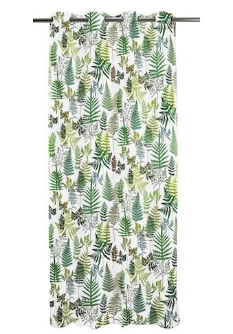 APELT Vorhang »Fauna«, HxB: 245x135 kaufen