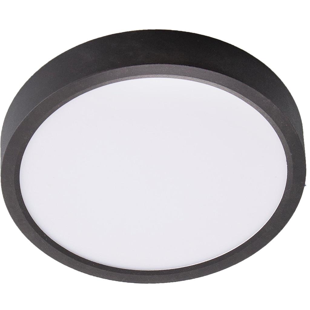 Nino Leuchten LED Deckenleuchte »Puccy«, LED-Board, 1 St., Warmweiß, LED Deckenlampe