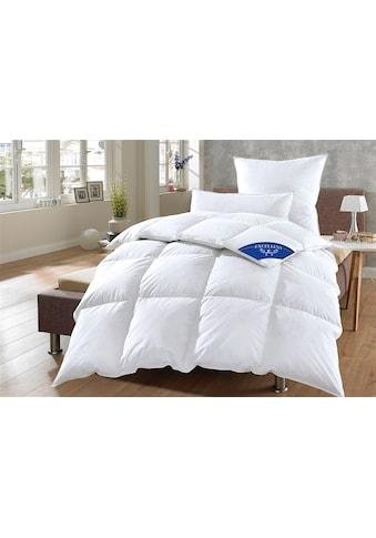 Excellent Daunenbettdecke »Komfort«, warm, Füllung 60% Daunen, 40% Federn, Bezug 100%... kaufen